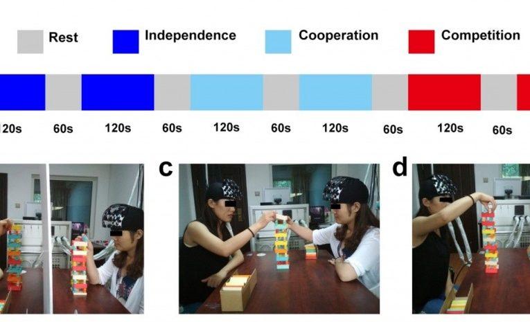 何清华教授团队揭示了面对面合作中被试对性别组成对脑间同步性的影响